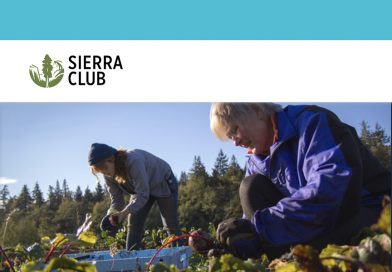 Sierra Club, Earthjustice and Allies Sue EPA over Attack on California's Waiver
