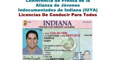 Licencias para todos