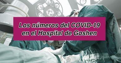 Los números del COVID-19 en el Hospital de Goshen