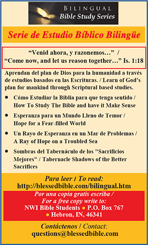 Blessed Bible Study Series in Spanish