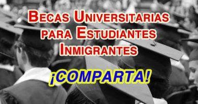 TheDream.US anuncia la apertura de su nueva ronda de becas universitarias para estudiantes inmigrante