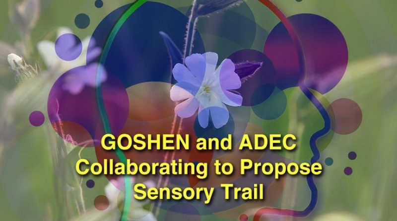 GOSHEN and ADEC Collaborating to Propose a Sensory Trail