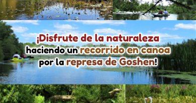 ¡Disfrute de la naturaleza haciendo un recorrido en canoa por la represa de Goshen!