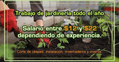 Trabajo de jardinería todo el año con salario entre $12 y $22 dependiendo de experiencia